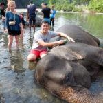 Elephant Tangkahan