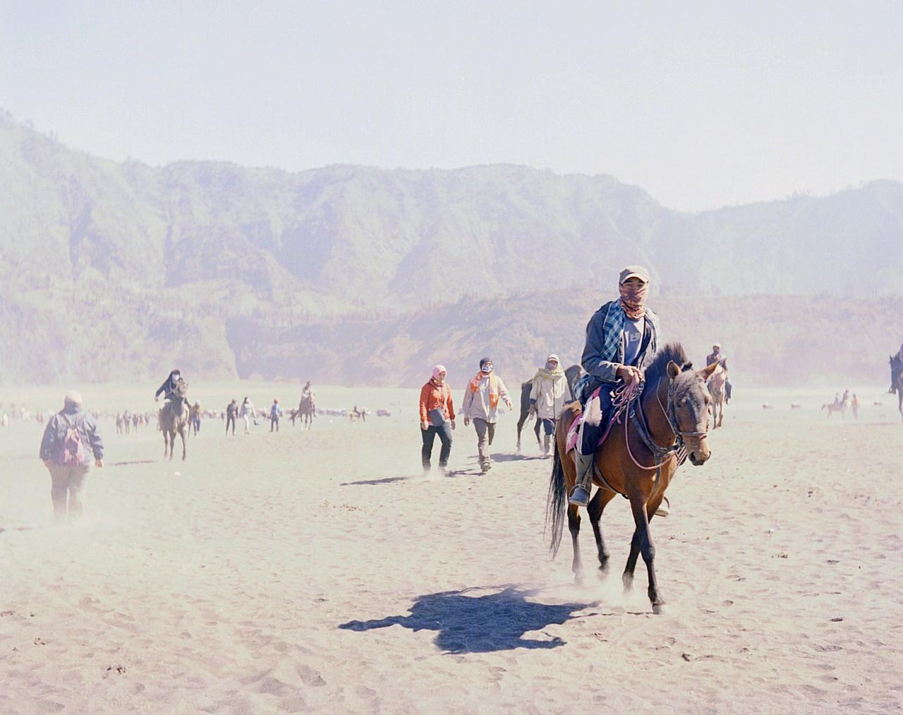 Bromo dan kuda