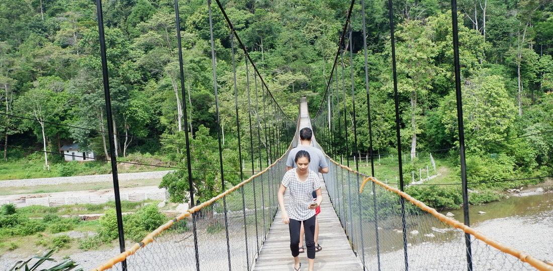 One Day Trip Tangkahan The Hidden Paradise