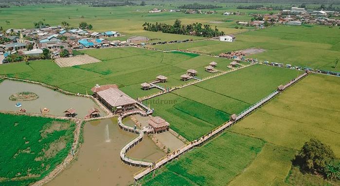 View Drone Wisata Sawah Pematang Johar
