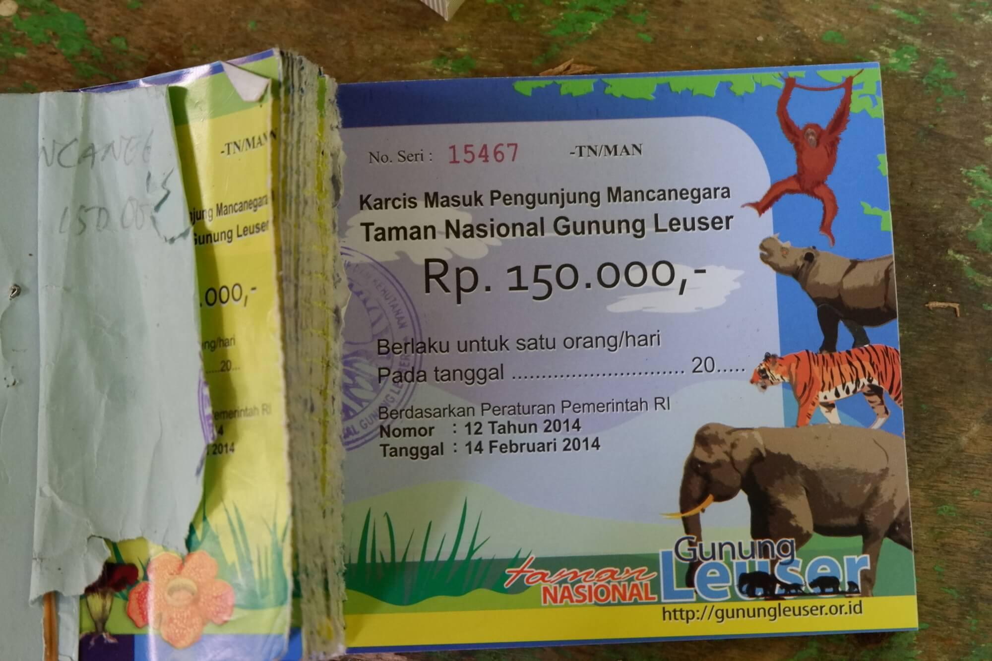 Karcis Masuk TNGL Melihat Orangutan di Indonesia