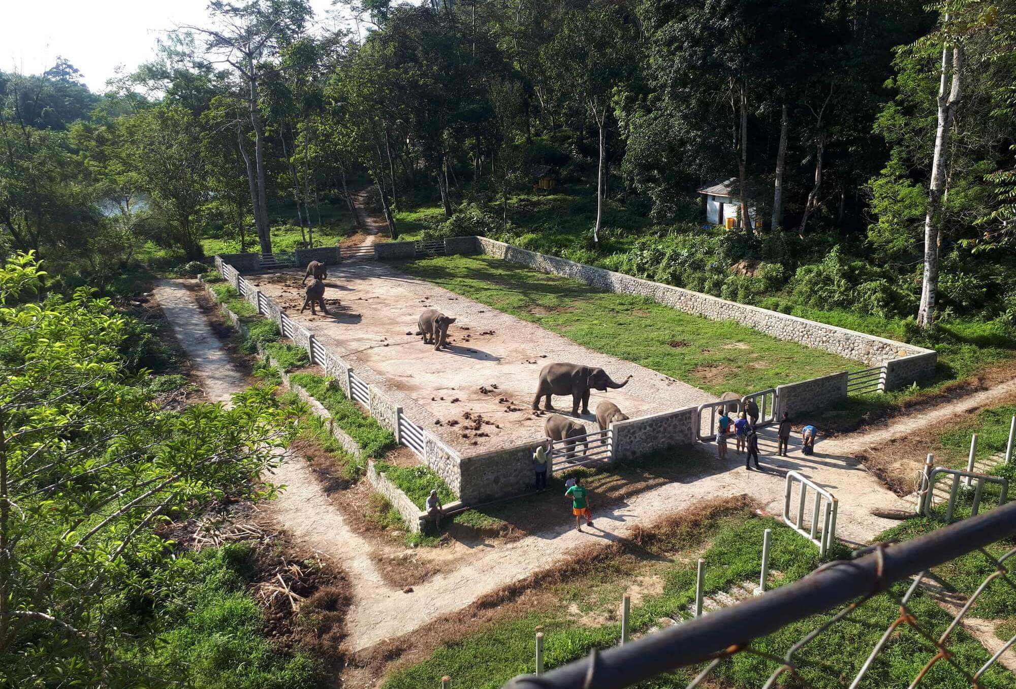 Kawasan Ekowisata Tangkahan