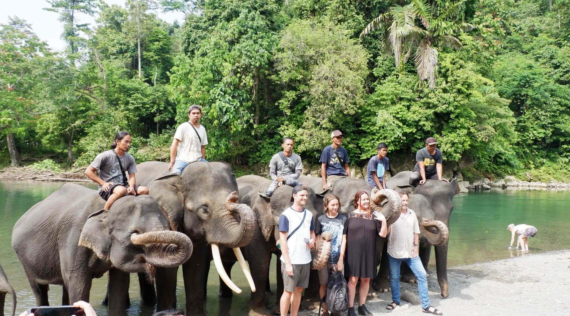 Ekowisata Tangkahan Konservasi Gajah Sumatera