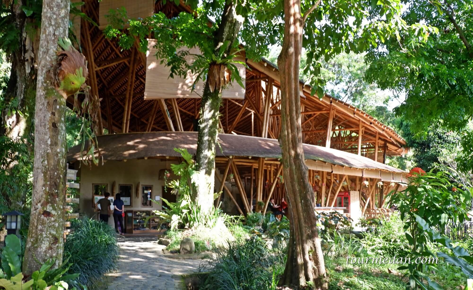 Penginapan Konservasi Orangutan Indonesia di Bukit Lawang